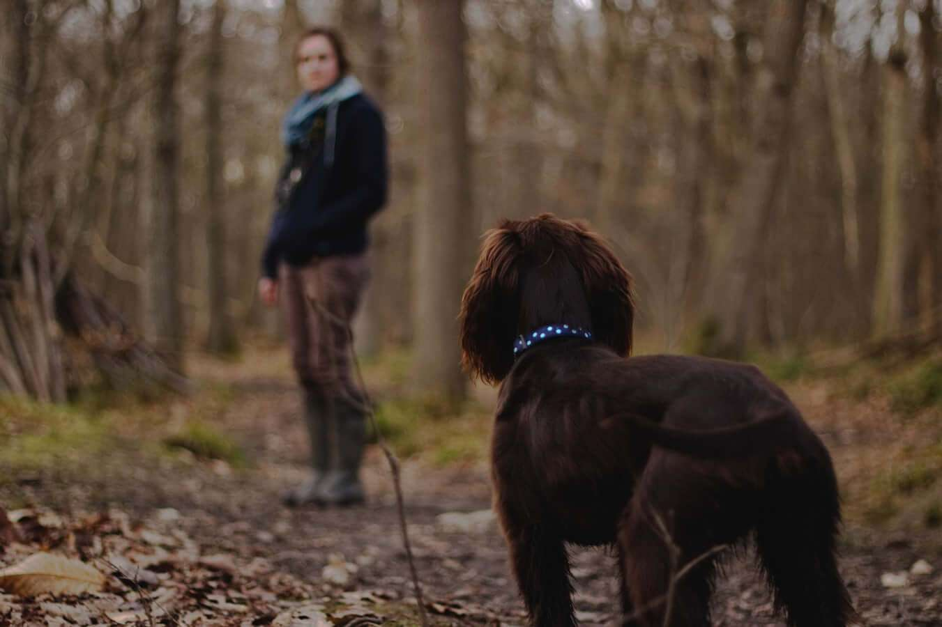 Woman outdoors walking her dog. Being active is important to staying healthy.